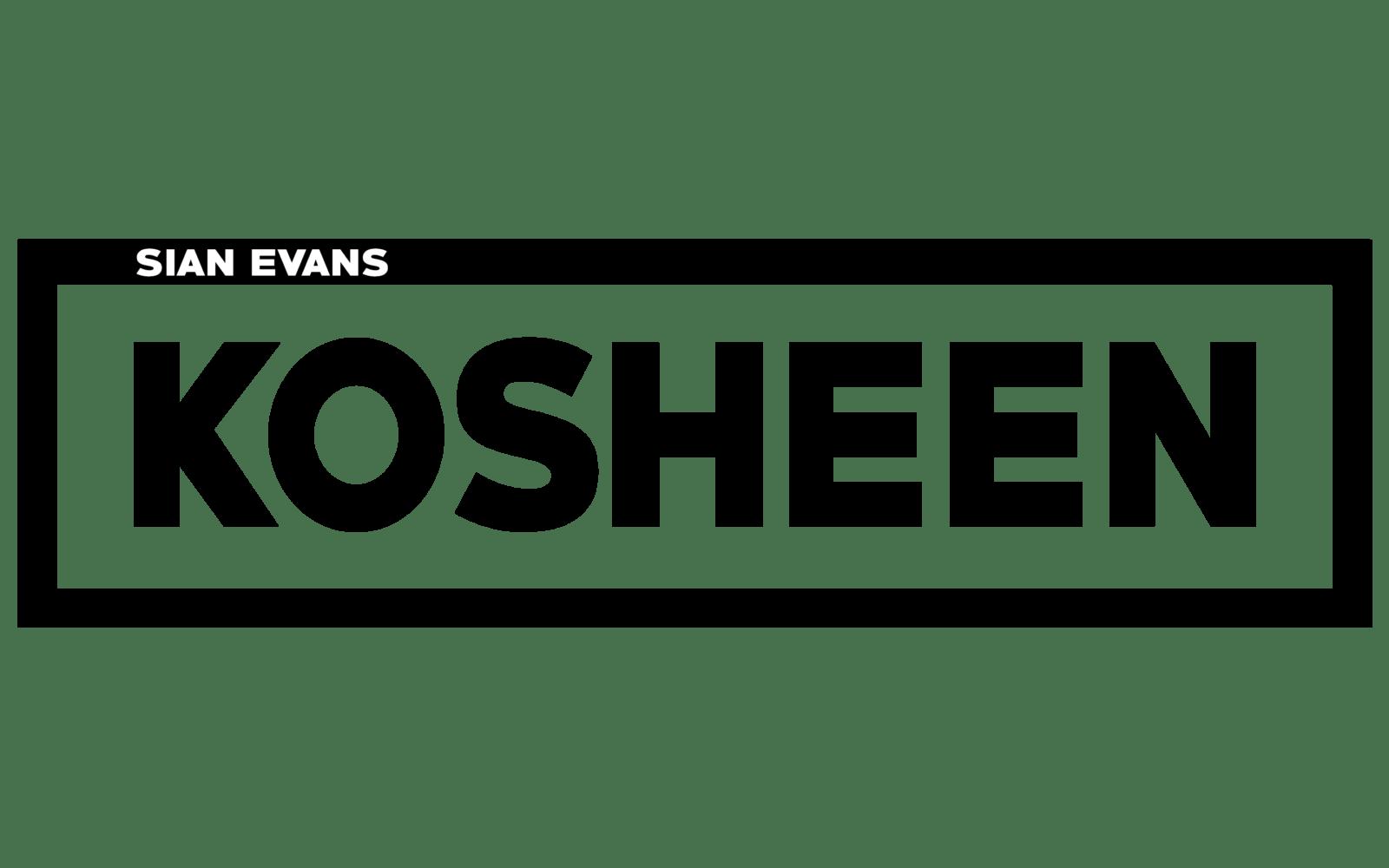 Kosheen Live